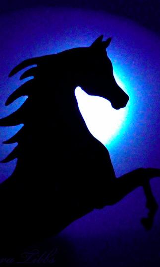 alberto jose perez mi caballo azul